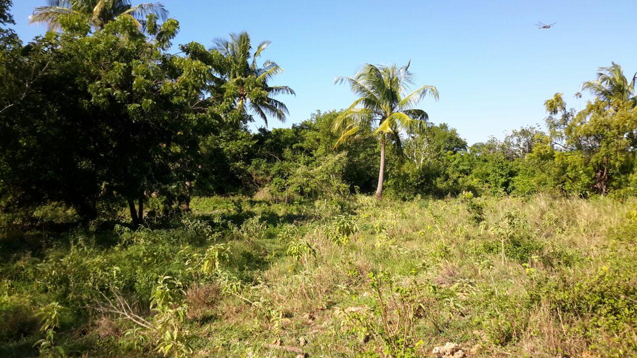 4.5 Acres Beach Plot For Sale